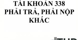 Phương pháp kế toán phải trả, phải nộp khác ( TK 338) theo Thông tư 133