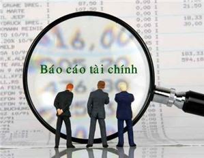Báo cáo tình hình tài chính – Mẫu số B01a – DNN  theo Thông tư 133.