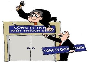 Quy định của luật doanh nghiệp về công ty TNHH một thành viên